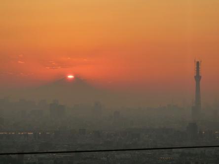 In Ichikawa Novemer 2010