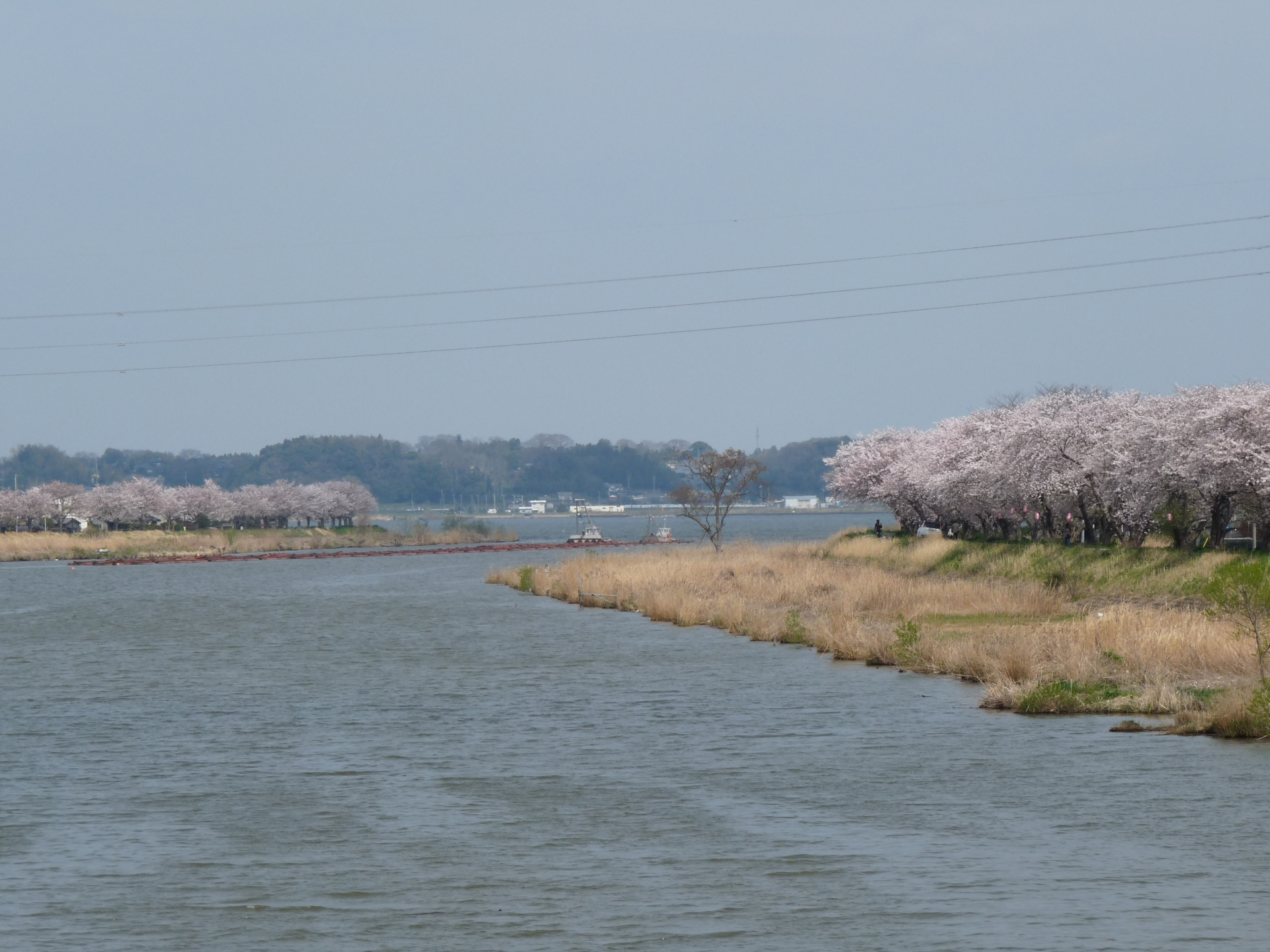 The river flows into Lake Kasumigaura