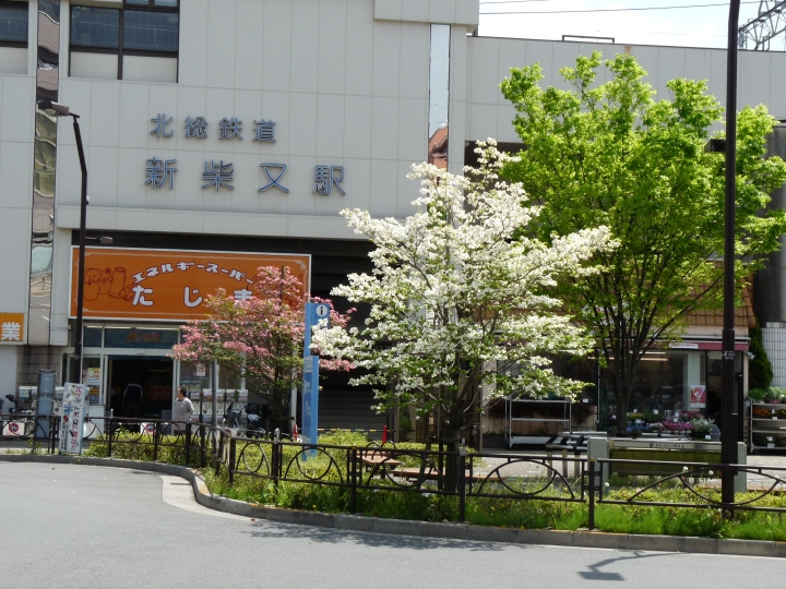 Shin-Shibama station