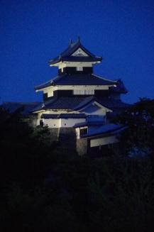 Komine Castle (Portrait)