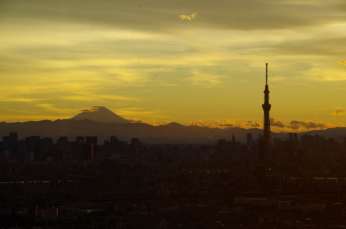 Mt.Fuji and Tokyo SkyTree