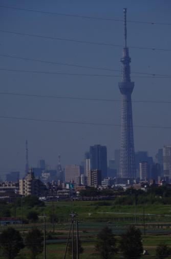 Tokyo Tower and TokyoSkyTree