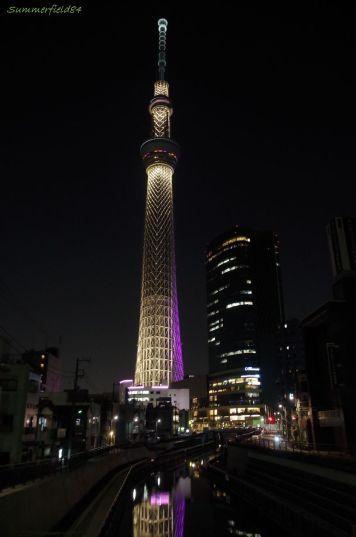 Tokyo SkyTree in lighting 'Miyabi'