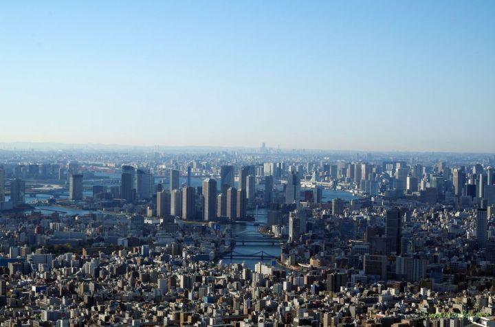 For Yokohama
