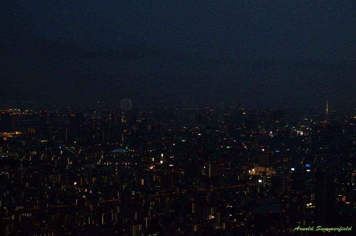 Could you see the firework and Tokyo Tower?