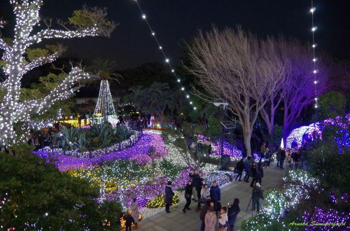 The illumination in Enoshima
